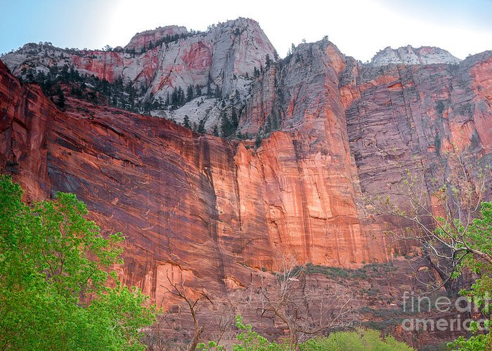 Zion National Parks Greeting Card featuring the photograph Sandstone Wall In Zion by Robert Bales