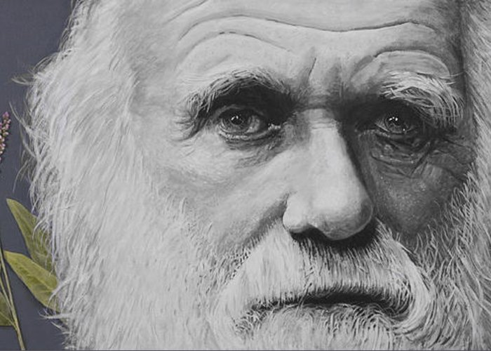 Evolution Greeting Card featuring the painting Sandwalk Wood- Charles Darwin. by Simon Kregar