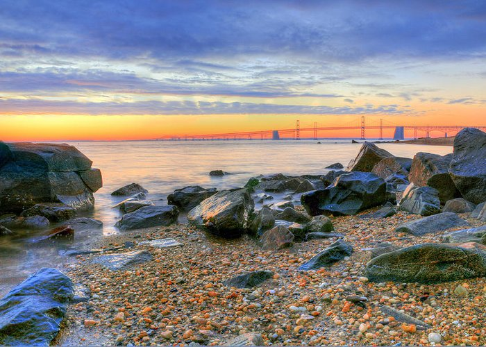 Chesapeake Greeting Card featuring the photograph Sandy by JC Findley