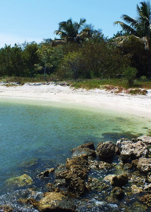 Sanibel Greeting Card featuring the photograph Sanibel Cove by Anna Villarreal Garbis