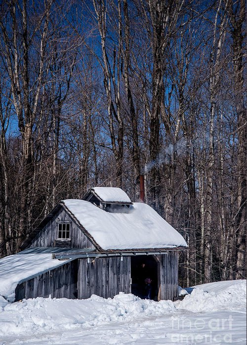 Sap Greeting Card featuring the photograph Sap House II by Alana Ranney