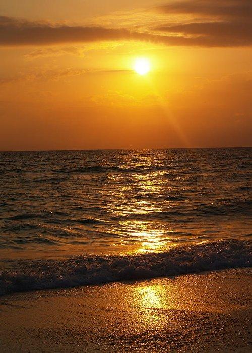 Nature Greeting Card featuring the photograph Sarasota Sunset Florida by Athala Carole Bruckner