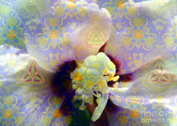 Satin Greeting Card featuring the photograph Satin Flower Fractal Kaleidoscope by Renee Trenholm