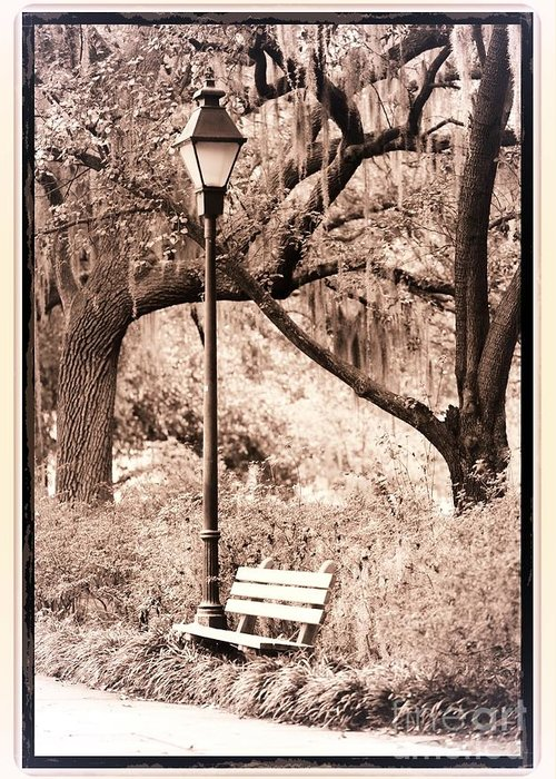 Bench Greeting Card featuring the photograph Savannah Bench Sepia by Carol Groenen