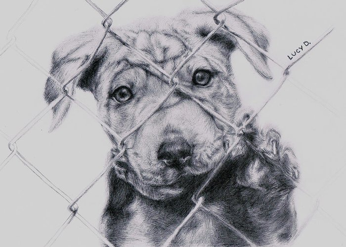 Animals Greeting Card featuring the drawing Save Me by Lucy D