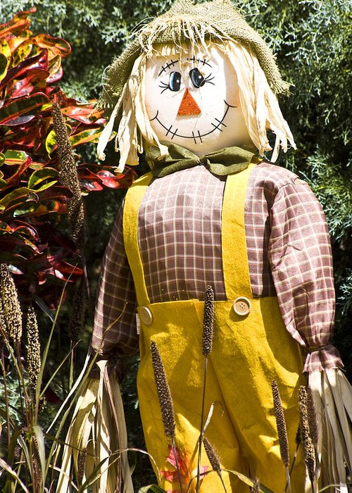 Scarecrow Greeting Card featuring the photograph Scare Crow by Carolyn Marshall