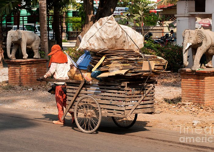 Cambodia Greeting Card featuring the photograph Scavenger by Rick Piper Photography
