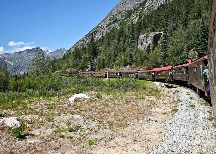 Alaska Greeting Card featuring the photograph Scenic Railroad by Sophie Vigneault