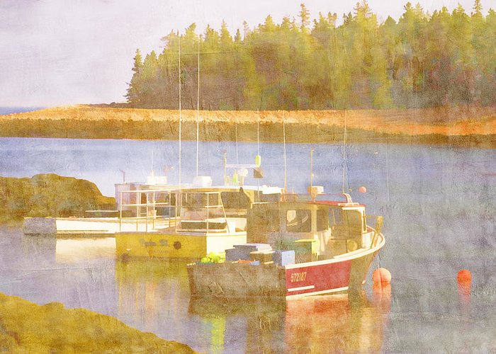 Schoodic Greeting Card featuring the photograph Schoodic Peninsula Maine by Carol Leigh