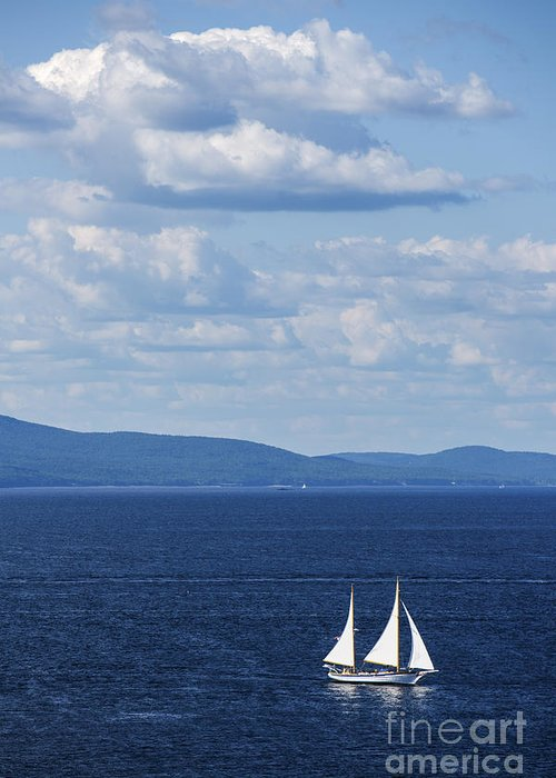 Maine Greeting Card featuring the photograph Schooner On The Bay by Diane Diederich