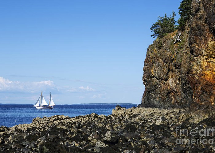 Schooner Greeting Card featuring the photograph Schooner Sailing In The Bay by Diane Diederich