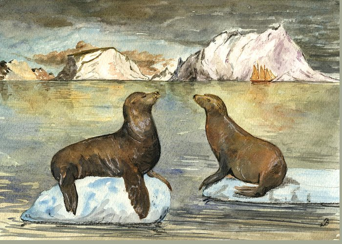 Seals Greeting Cards