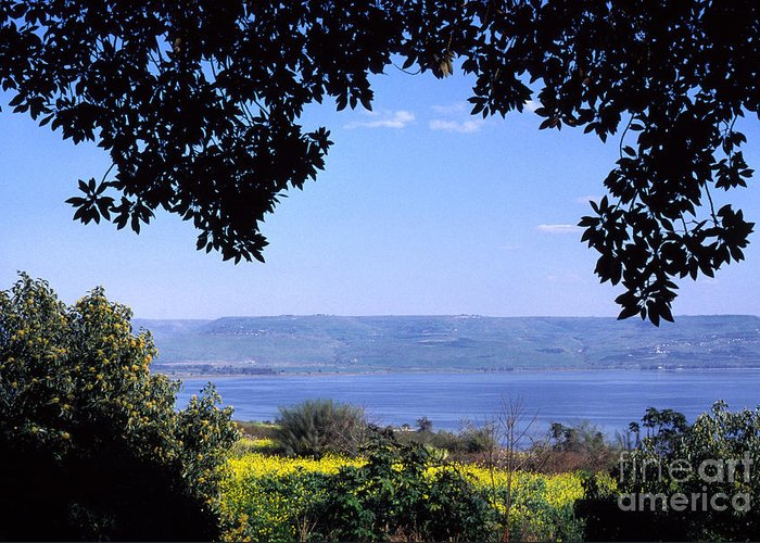 Sea Of Galilee Greeting Card featuring the photograph Sea Of Galilee From Mount Of The Beatitudes by Thomas R Fletcher
