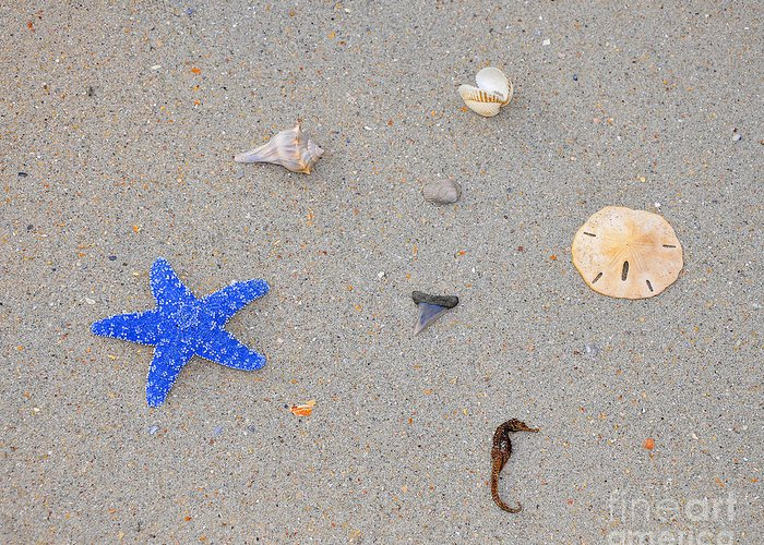 Sea Star Greeting Card featuring the photograph Sea Swag - Dark Blue by Al Powell Photography USA