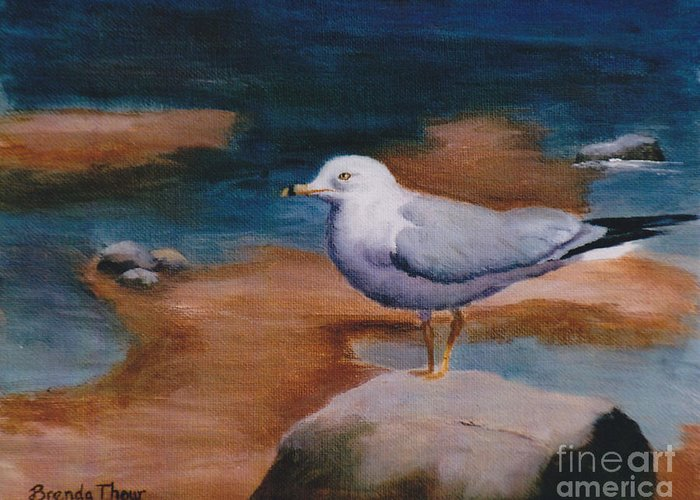 Seagull Bird Wildlife Water Rock Pond Puddle Original Art Painting Oil fine Art Greeting Card featuring the painting Seagull by Brenda Thour