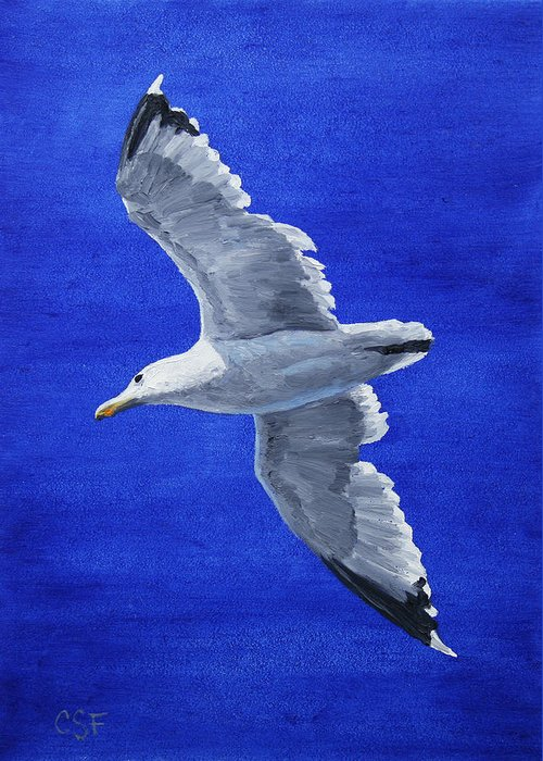 Bird Greeting Card featuring the painting Seagull In Flight by Crista Forest