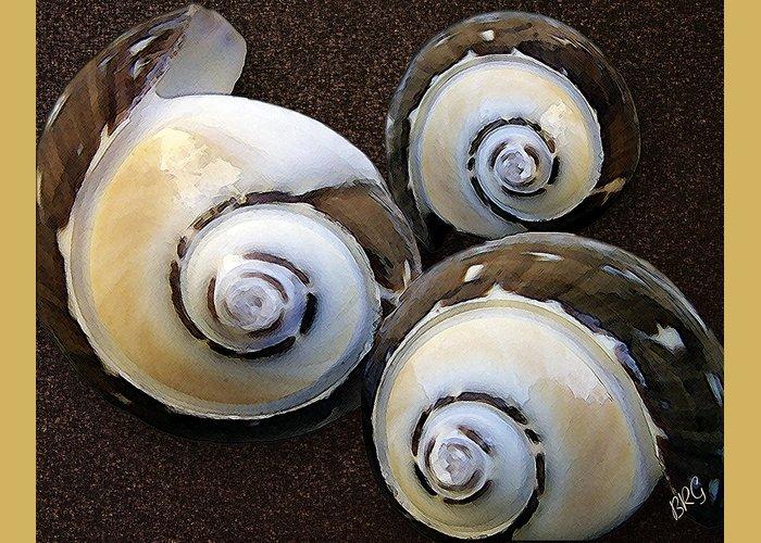 Seashell Greeting Card featuring the photograph Seashells Spectacular No 23 by Ben and Raisa Gertsberg