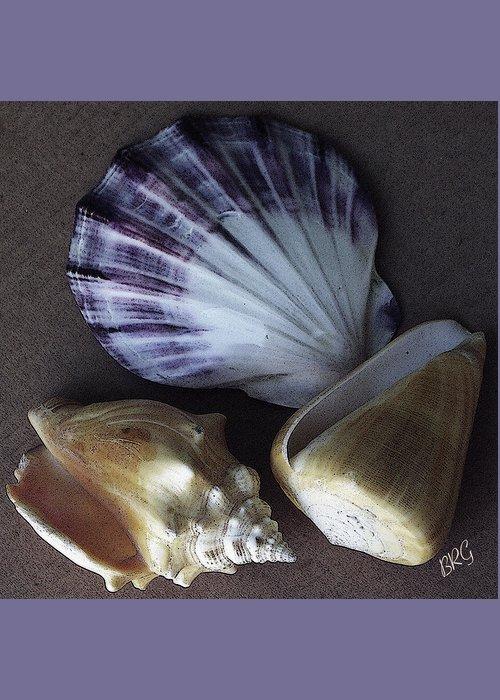 Seashell Greeting Card featuring the photograph Seashells Spectacular No 30 by Ben and Raisa Gertsberg