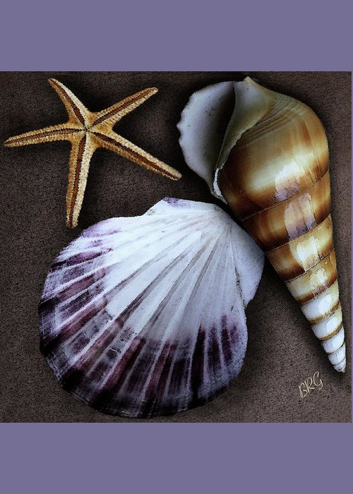 Seashell Greeting Card featuring the photograph Seashells Spectacular No 37 by Ben and Raisa Gertsberg