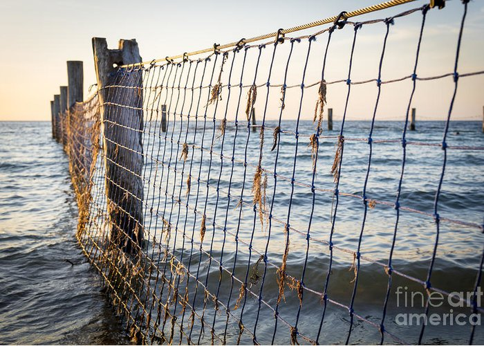 Nets Greeting Card featuring the photograph Seaside Nets by Tim Hester