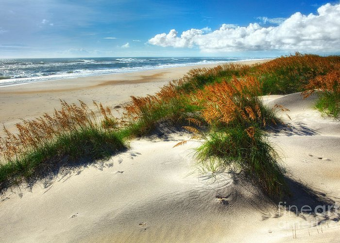 North Carolina Greeting Card featuring the photograph Seaside Serenity I - Outer Banks by Dan Carmichael
