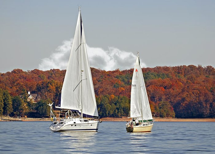 Two Greeting Card featuring the photograph Seasonal Sailing by Susan Leggett