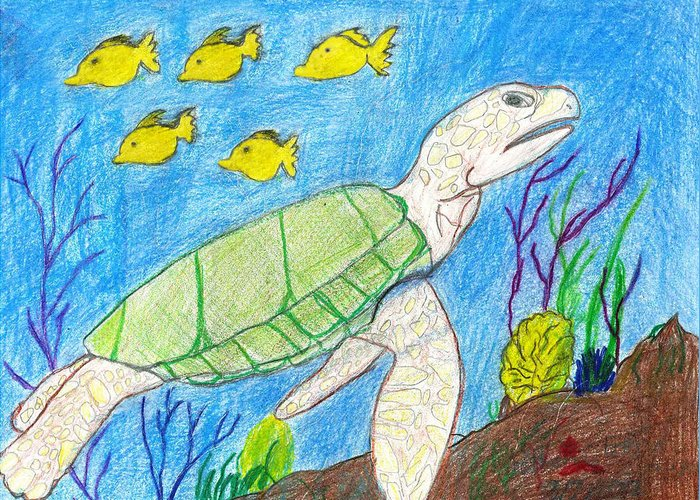 Sea Turtle Greeting Card featuring the drawing Seaturtle Swimming The Reef by Fred Hanna