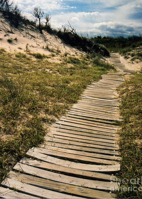 Dunes Greeting Card featuring the photograph Secret Path by Gerlinde Keating - Galleria GK Keating Associates Inc