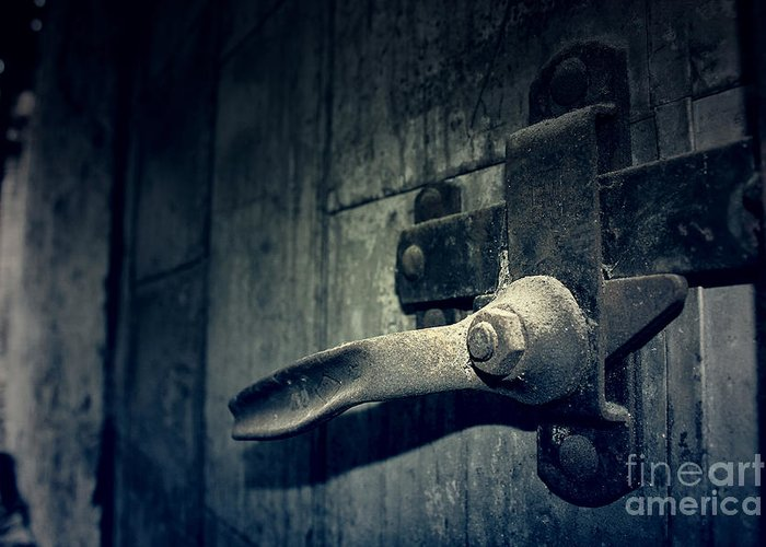 Door Greeting Card featuring the photograph Secrets Within by Trish Mistric
