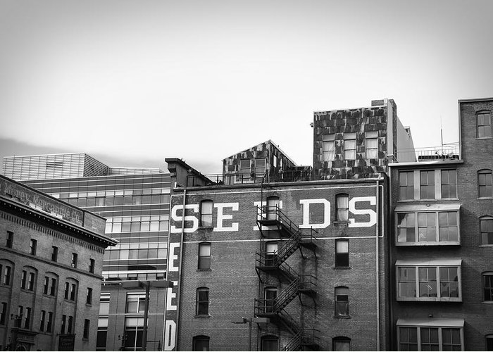 Black And White Greeting Card featuring the photograph Seeds Building Two by Todd Hartzo