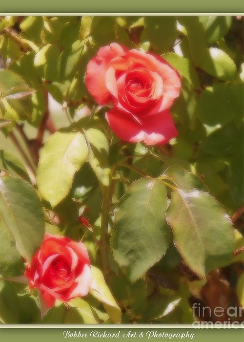 Rose Greeting Card featuring the photograph Seeing Double by Bobbee Rickard