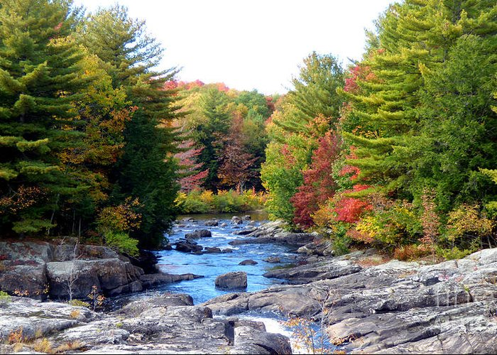 Landscape Greeting Card featuring the photograph September Days by Rennae Christman