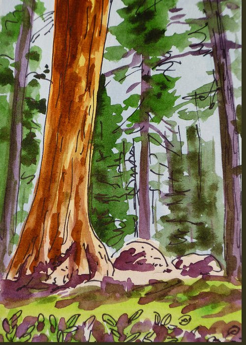Sketchbook Greeting Card featuring the painting Sequoia Park - California Sketchbook Project by Irina Sztukowski