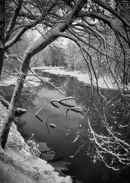 Woods Greeting Card featuring the photograph Serene Winter Stream by Paul Schreiber