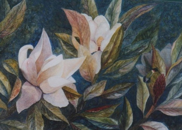 Magnolias; Humming Bird Greeting Card featuring the painting Serenity by Ben Kiger