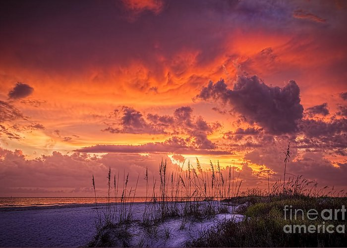 Beach Greeting Card featuring the photograph Serenity by Marvin Spates