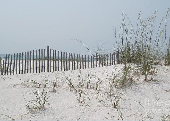 Sand Greeting Card featuring the photograph Serenity by Megan Cohen