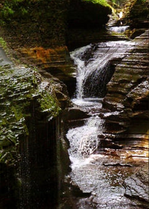 Waterfall Greeting Card featuring the photograph Serenity by Sarah Donald