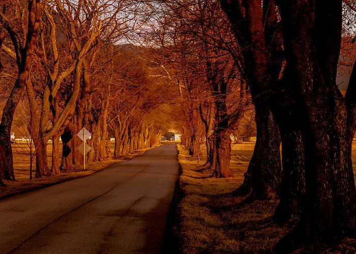 Landscape Greeting Card featuring the photograph Setting Sun On Country Road by Frank Selvage