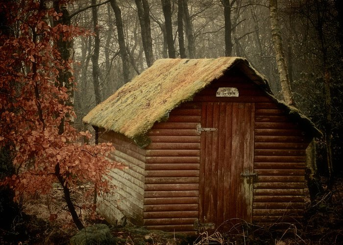 Shack Greeting Card featuring the photograph Shack by Odd Jeppesen