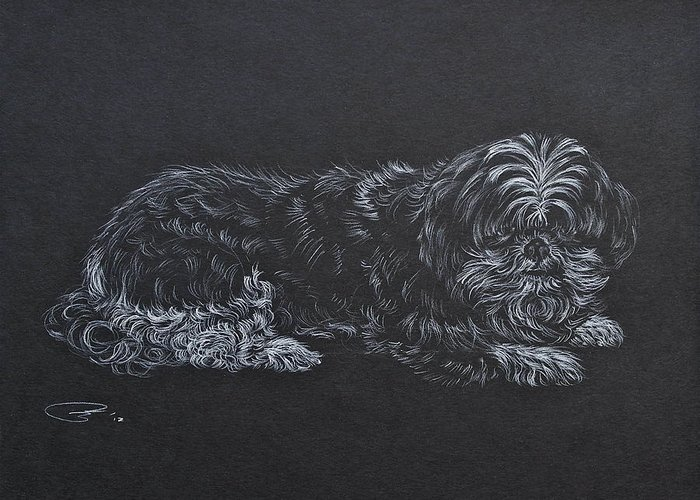 Dog Drawing Greeting Card featuring the drawing Shadow by Michele Myers