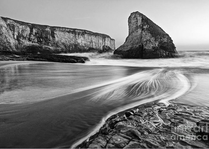 Shark Fin Cove Greeting Card featuring the photograph Shark Fin Cove At Dusk. by Jamie Pham