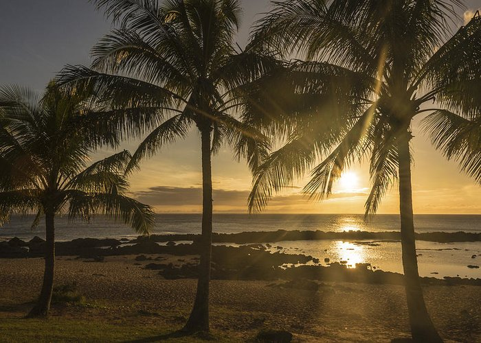 Sharks Cove Sunset North Shore Oahu Hawaii Hi Seascape Greeting Card featuring the photograph Sharks Cove Sunset 2 - Oahu Hawaii by Brian Harig