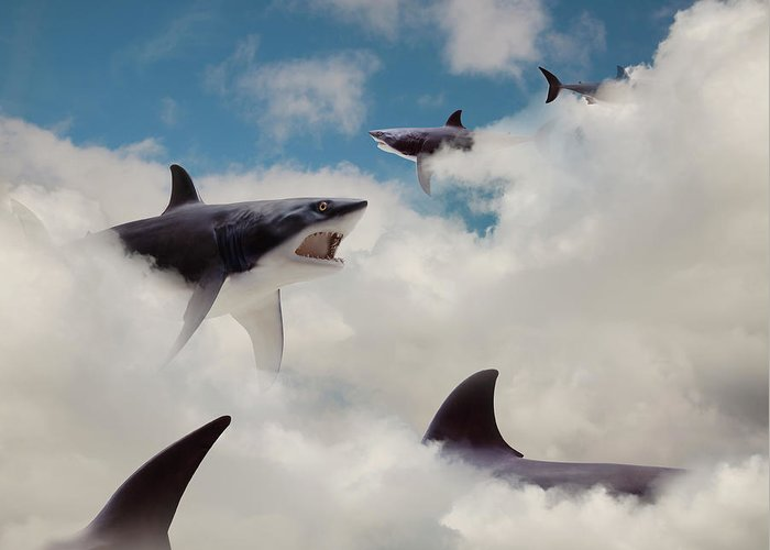 Risk Greeting Card featuring the photograph Sharks Floating In Clouds by John M Lund Photography Inc