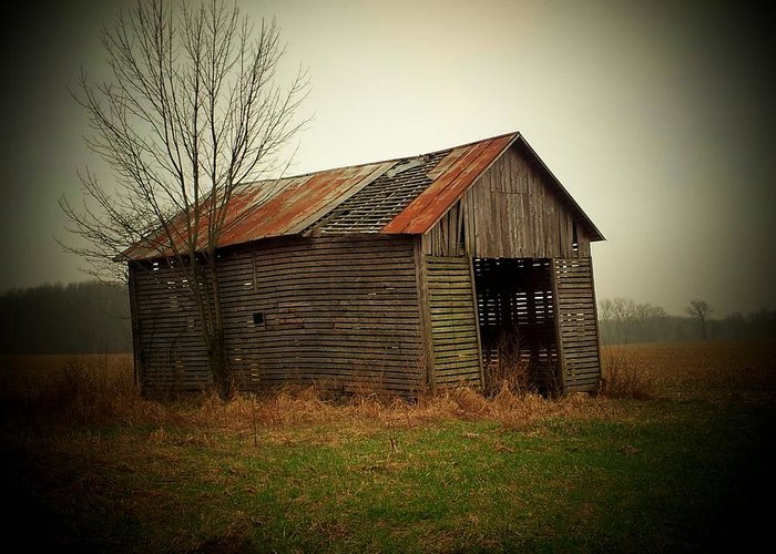 Shed Greeting Card featuring the photograph Shed In Pasture by Michael L Kimble