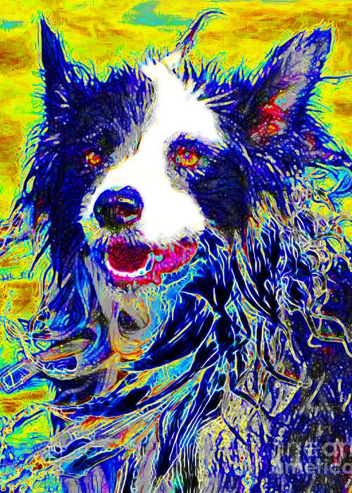 Animal Greeting Card featuring the photograph Sheep Dog 20130125v1 by Wingsdomain Art and Photography
