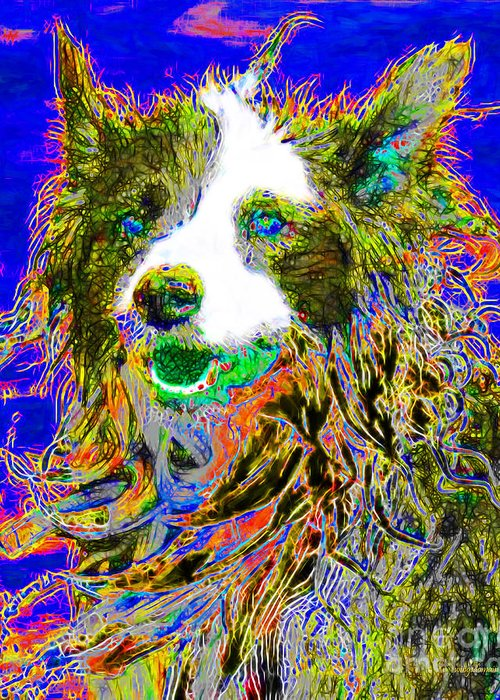 Animal Greeting Card featuring the photograph Sheep Dog 20130125v3 by Wingsdomain Art and Photography