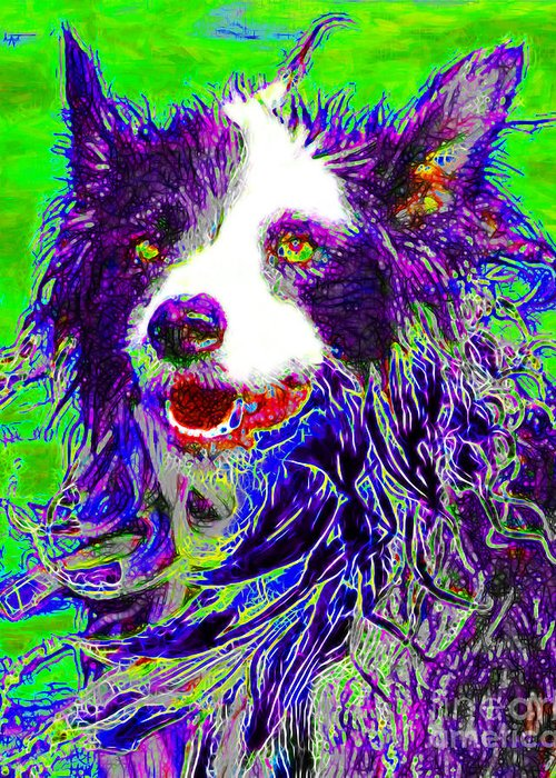 Animal Greeting Card featuring the photograph Sheep Dog 20130125v4 by Wingsdomain Art and Photography