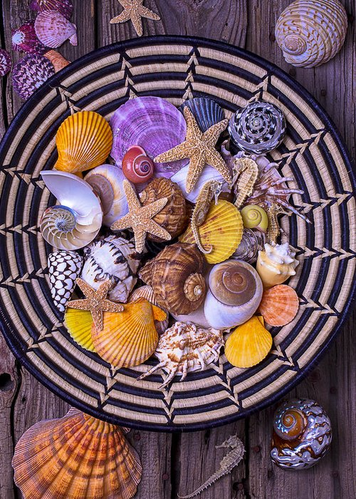 Sea Shells Starfish Greeting Card featuring the photograph Shell Collecting by Garry Gay