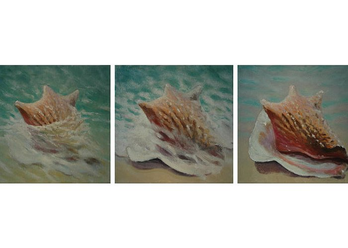Set Greeting Card featuring the painting Shells Triptych by Don Young